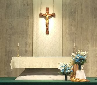 Holy Day Collections (Assumption, Imma. Conception, All Saints, Ascenion, Mary Mother of God)