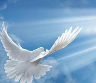 Remembrance Memorial Donation