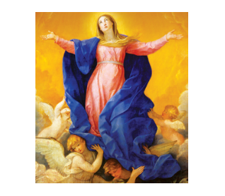 Assumption of Our Blessed Mother (August  2020)