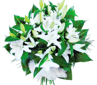 St Augustine-Easter Flower/ Memorial Collection